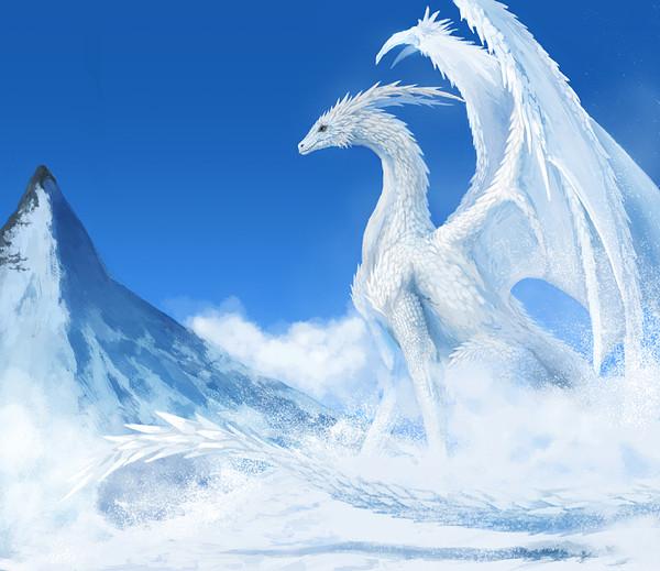 картинки белые драконы